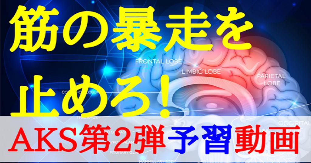 AKS第2弾DVD予習動画