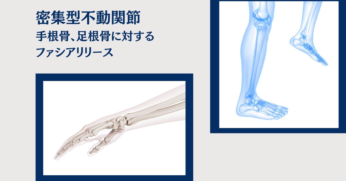 手根骨、足根骨に対するファシアリリース