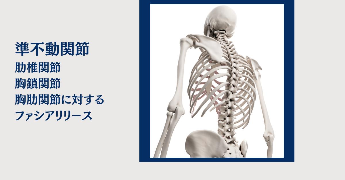 肋椎関節、胸鎖関節、胸肋関節に対するファシアリリース